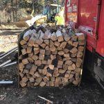 Tommy-Trees-Seasoned-Firewood-Orange-County-NY-IMG_0600