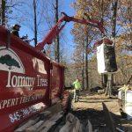 Tommy-Trees-Seasoned-Firewood-Orange-County-NY-IMG_0613