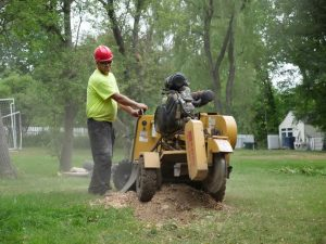 Stump grinding West Point NY
