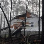 Tommy-Trees-emergency-tree-services-Orange-County-NY-IMG_1340