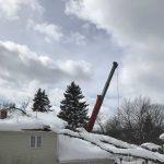 Tommy-Trees-tree-emergency-tree-service-Orange-County-NY-IMG_1092