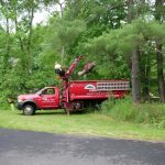 tommy-trees-tree-services-orange-county-ny-6